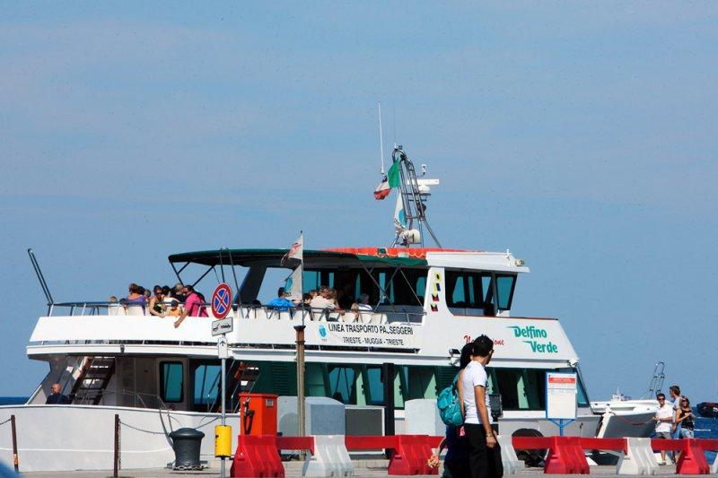 Ufficio Verde Pubblico Trieste : Proseguono gli interventi di manutenzione del verde pubblico a