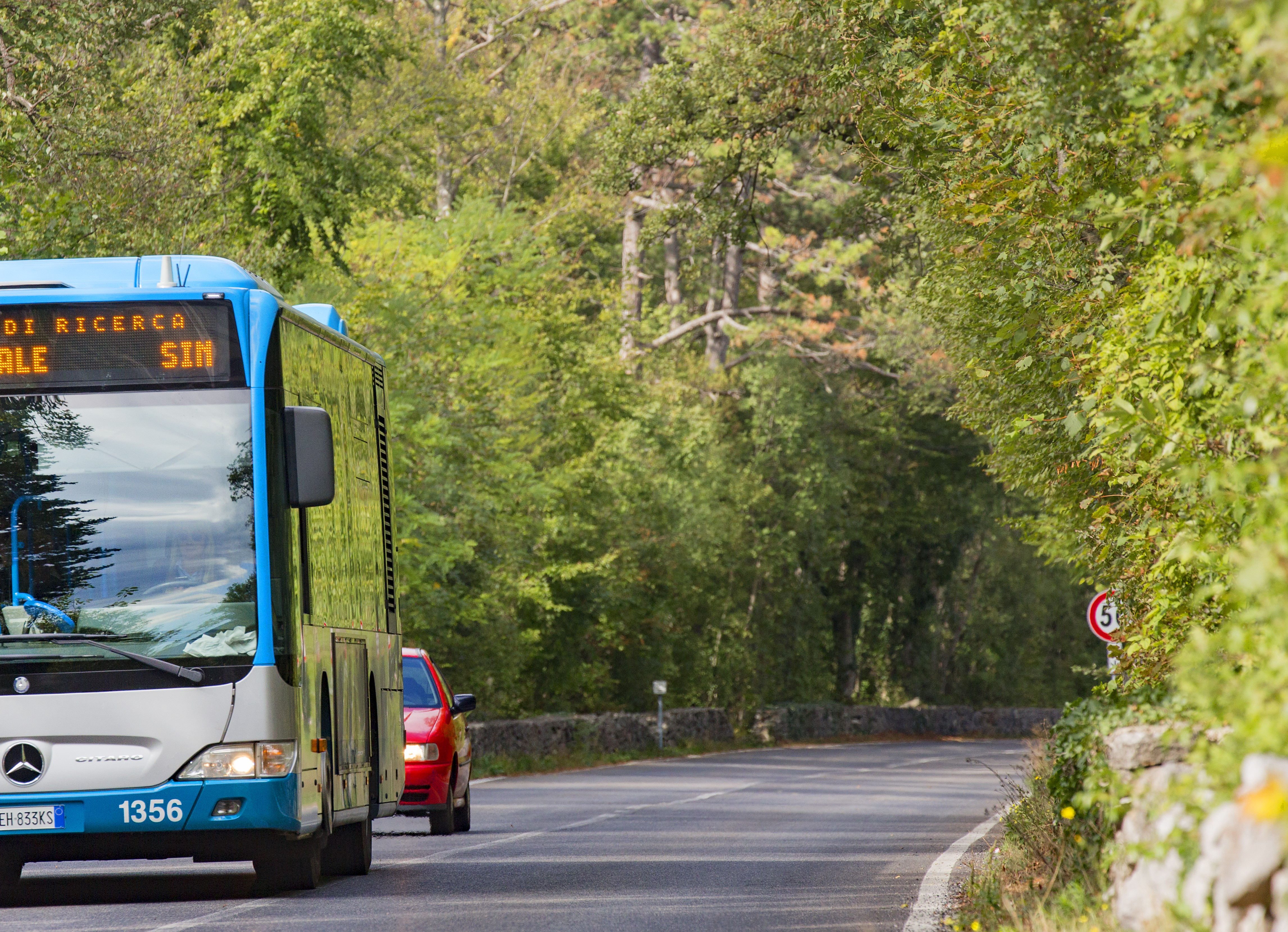I percorsi e le fermate – Trieste Trasporti Spa